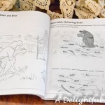 Pages and Projects {Bible Story Coloring & Activity Book}