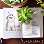 Pages and Projects {The 4 Wills of God, Great & Small Bible, The Life-Giving Parent}