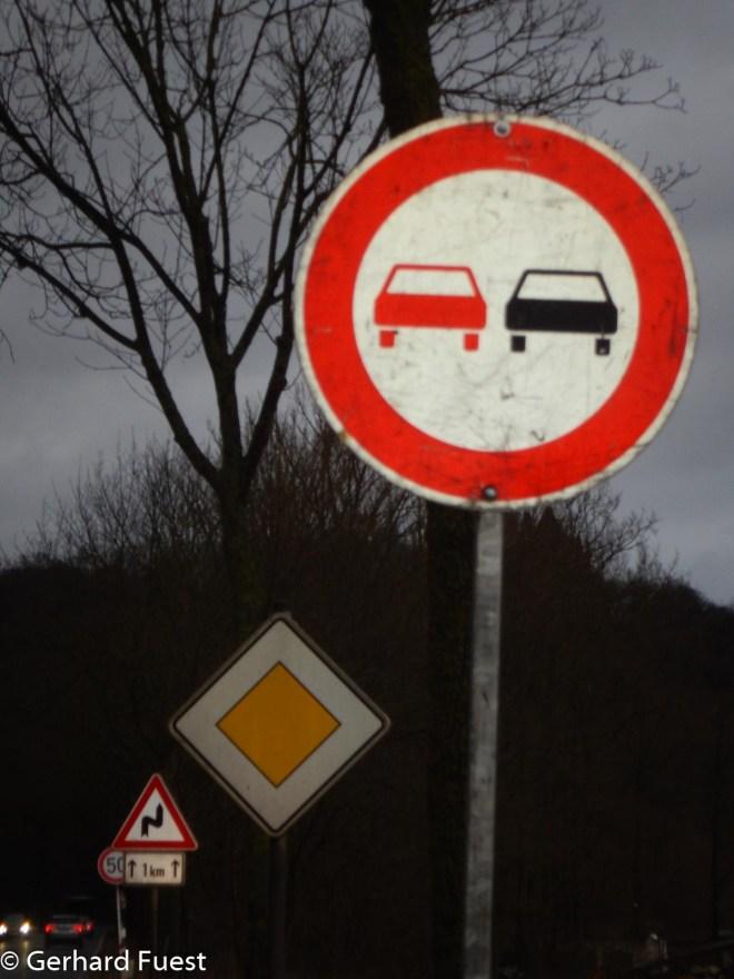 Die Krötenwanderung auf der Straße unterhalb des Marienberges hat wieder begonnen, daher bitte Vorsicht!