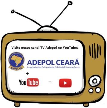 Arte TV Adepol