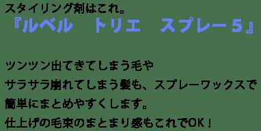 松田ハーフアレンジ-S.