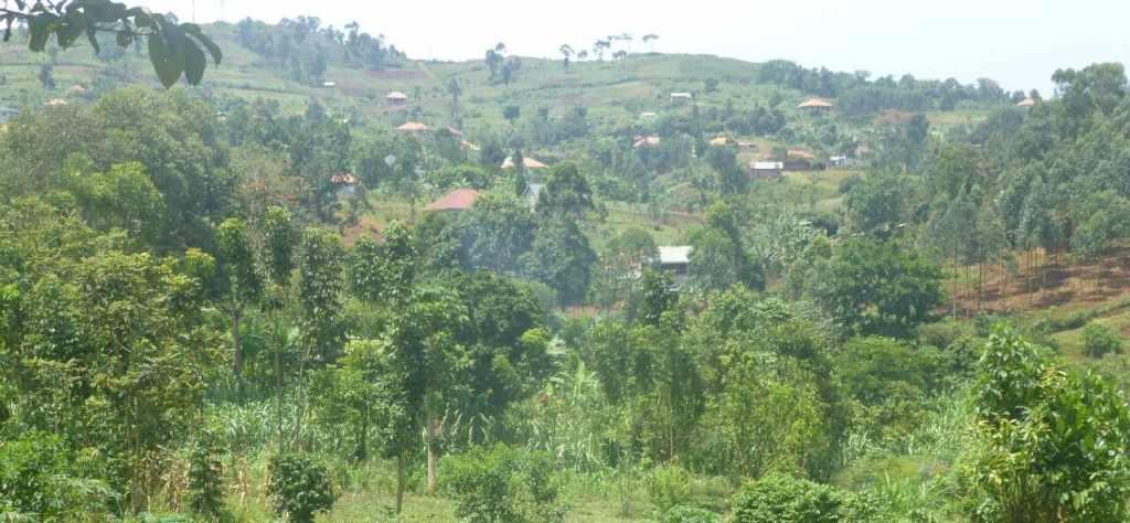 land sale mbalala