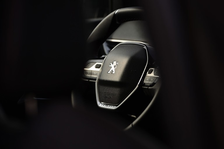 Peugeot 5008 (5)