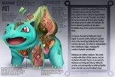 Anatomi Bulbasaur (Pokemon). Ilustrasi oleh Christopher Stoll.