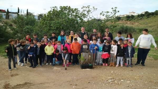 Proyecto de reforestación en Turre