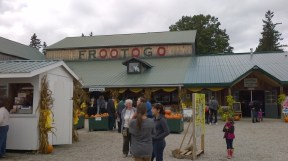 Frootogo bakery