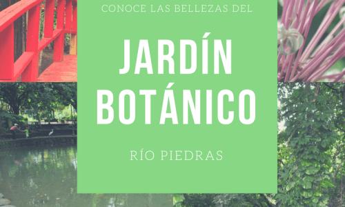 Conoce las bellezas del Jardín Botánico en Rio Piedras