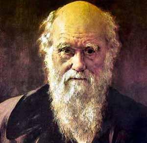 Classic Darwin - adidarwinian