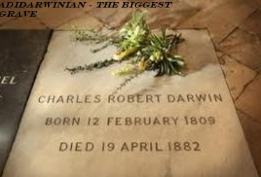 motive and the biggest grave - adidarwinian