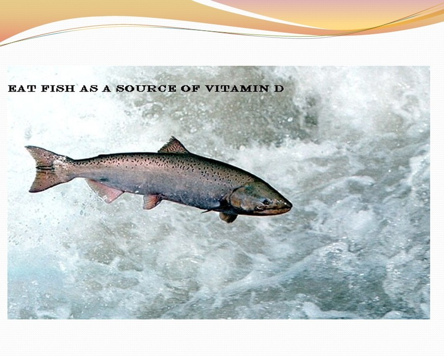 The Essence of Vitamin D – Adidarwinian 6