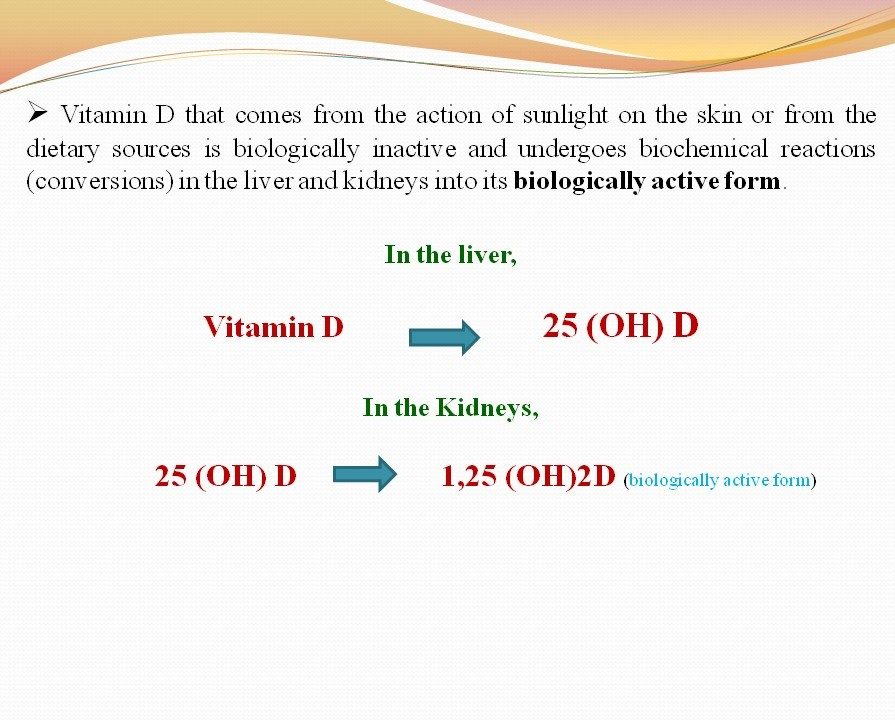 The Essence of Vitamin D – Adidarwinian 8