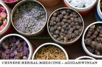 Chinese Herbal Medicine - Adidarwinian