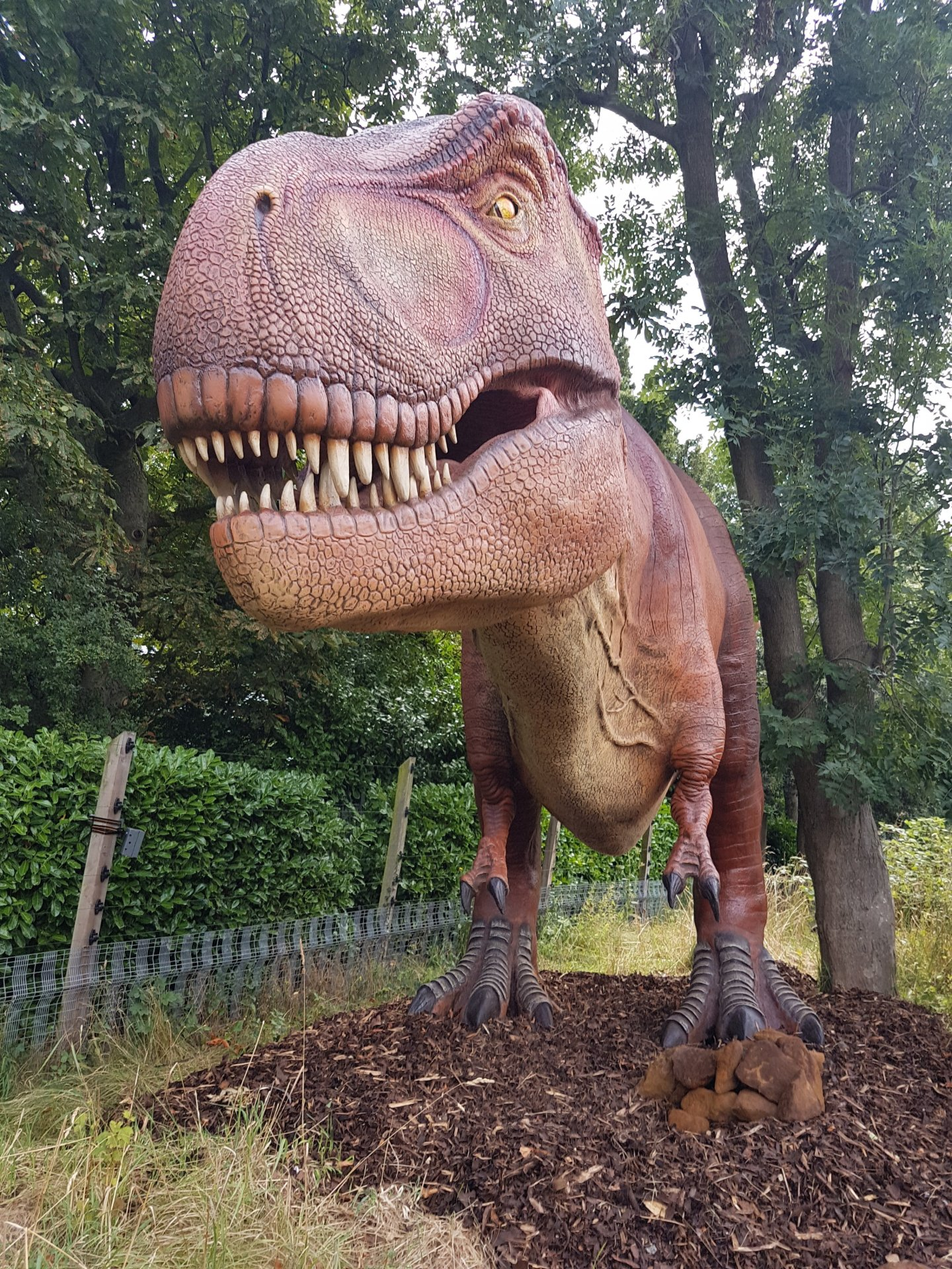 Zoorassic Park – London Zoo