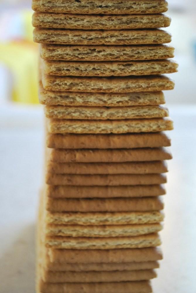 Biscuit Salami (2/5)