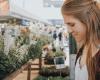 Dialog Membeli Baju dan Sayuran di Pasar Dalam Bahasa Inggris dan Artinya