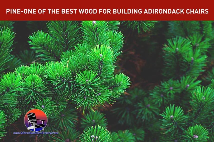 PINE for building adirondack chairs