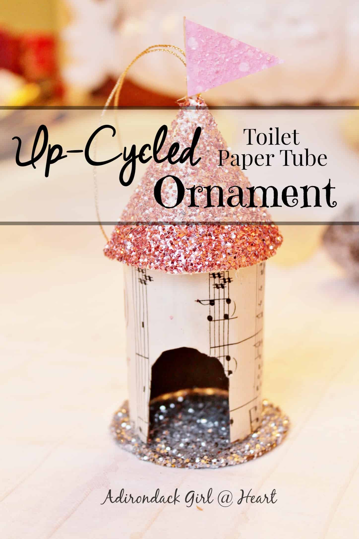 Toilet Paper Tube Upcycled Bird House Christmas Ornament