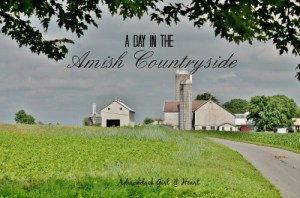The Amish Countryside (Lancaster, PA)