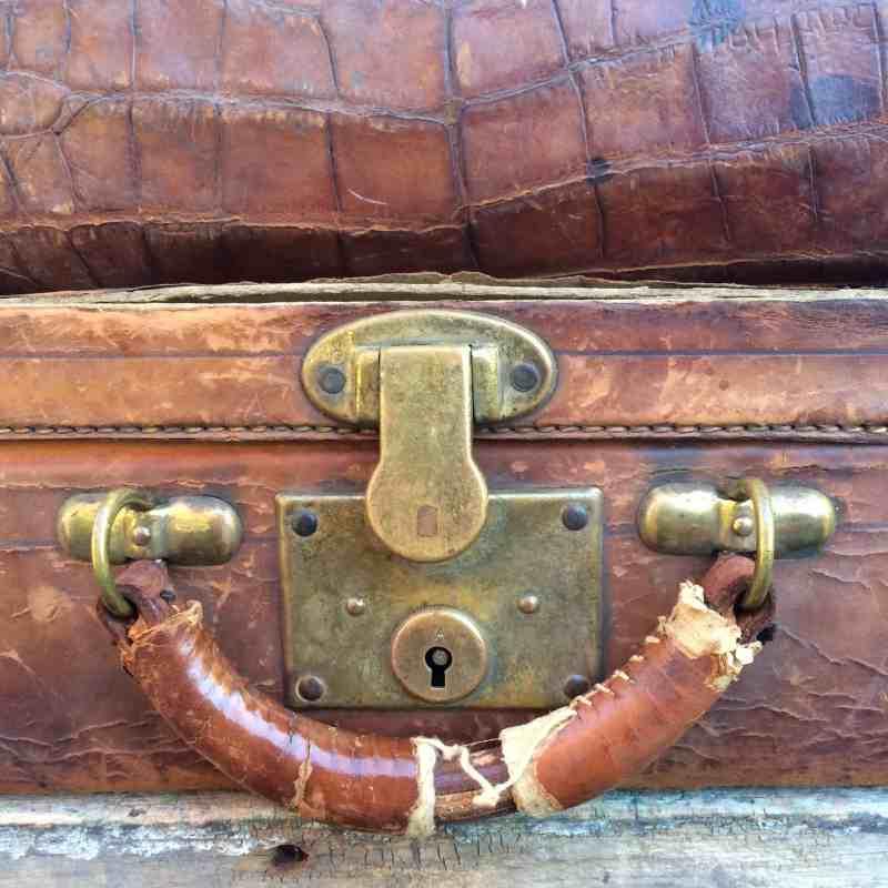 vintage alligator bag and leather briefcase