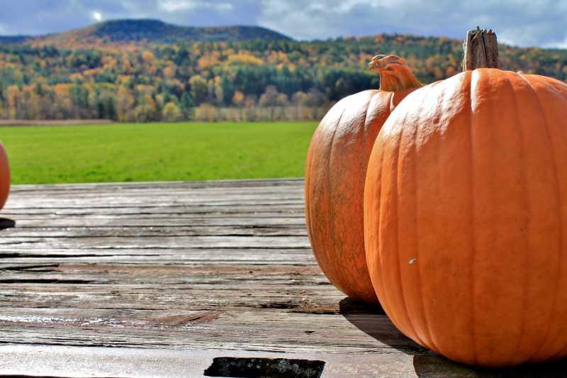 Pumpkins for sale in the Helderberg Mts. Adirondack Girl @ Heart