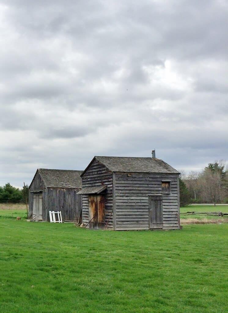 2-gray-barns-on-mabee-farm-1-746x1024