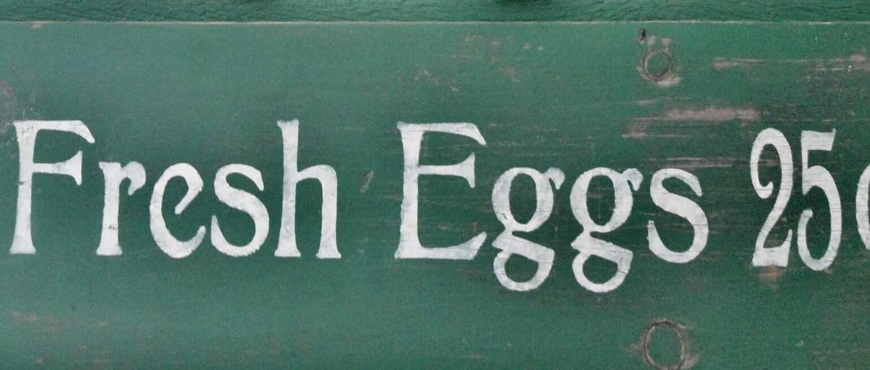 Vintage Fresh Eggs Sign
