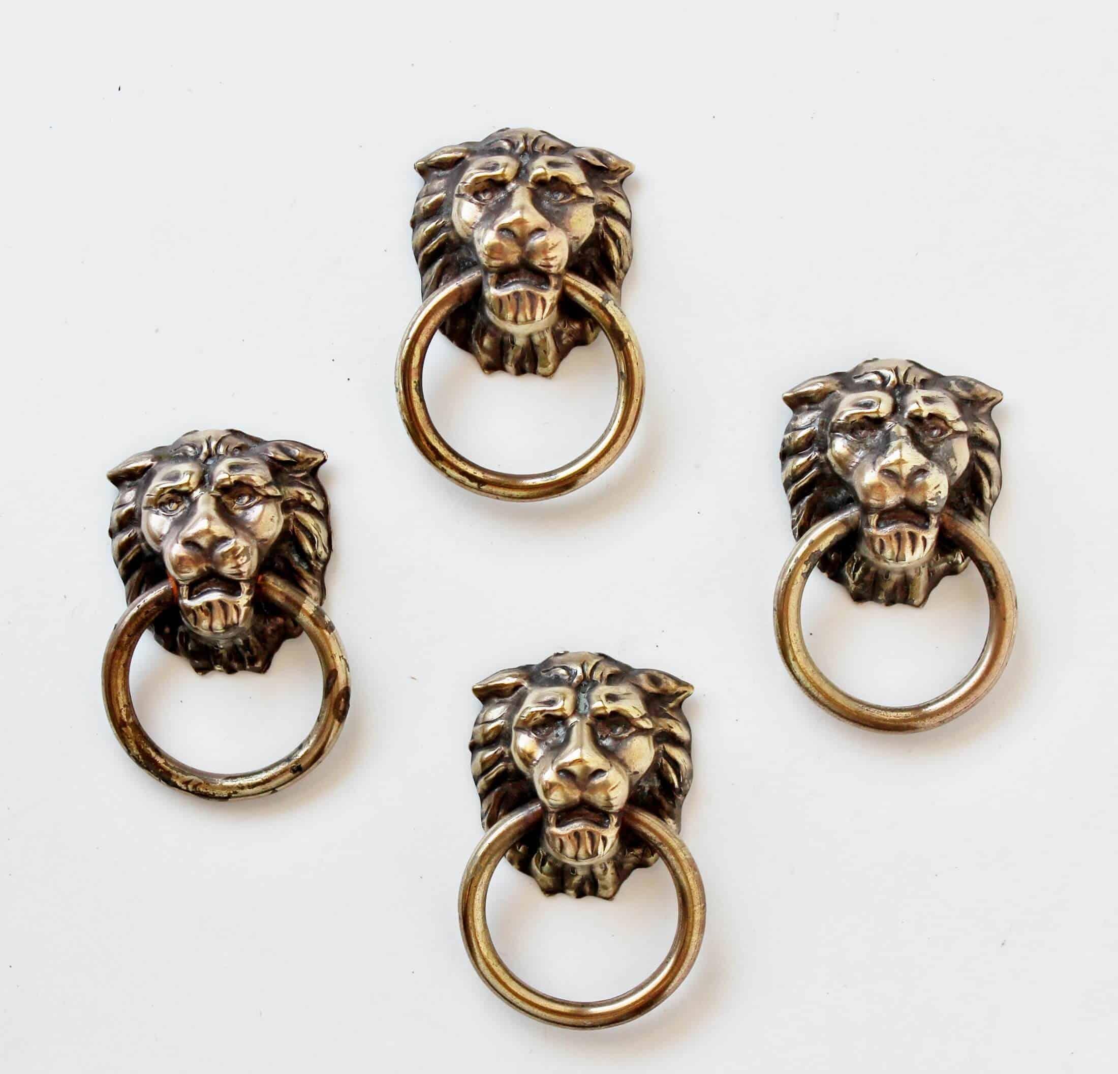 brass lion head drawer pulls