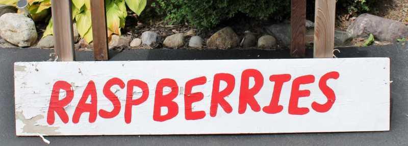 vintage raspberries sign