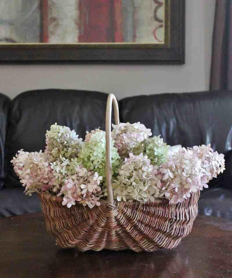 wicker basket with dried hydrangea