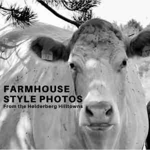 Farmhouse Style Photos from the Helderberg Hilltowns