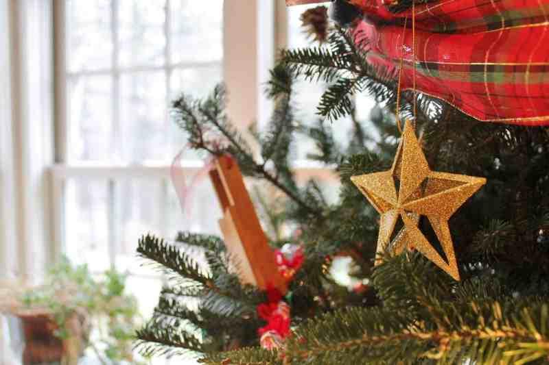 west mt. inn christmas tree