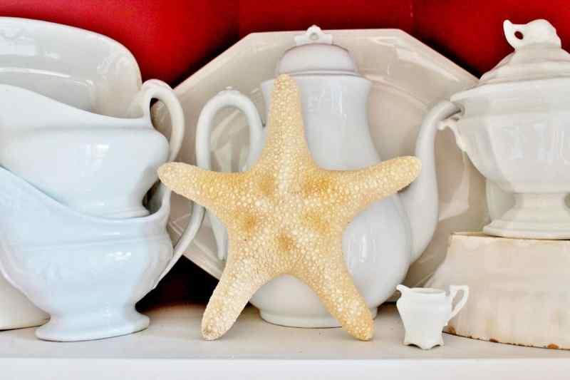 Starfish with antique ironstone