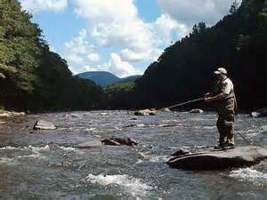 Spring fly fishing on the Hudson River