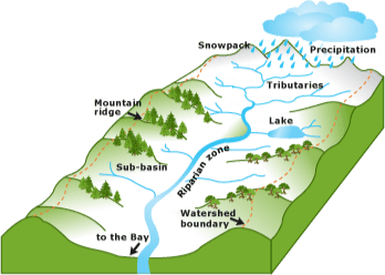 Let's talk about watersheds…
