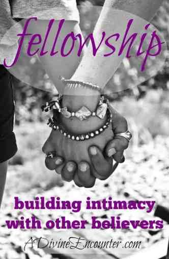 An honest post exploring true fellowship with other believers. (I John 1:7) https://adivineencounter.com/fellowship
