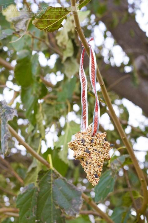 Bird Food Ornament