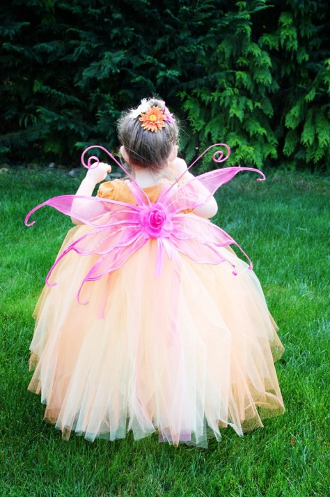 Fairy Halloween Costume