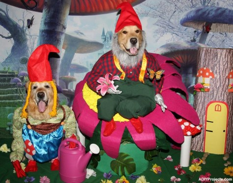 Garden Gnomes Halloween Costume