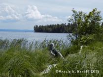 Whitefish Bay view, unedited 3