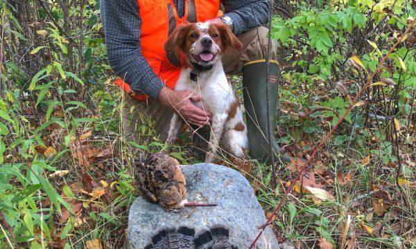 Adirondack-New-York-Bird Hunting-NY-19
