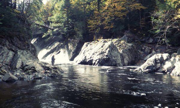 Fly-Fishing-Adirondack-New-York-NY