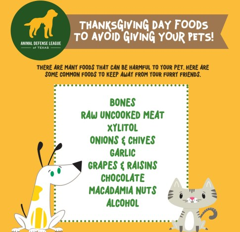 Thanksgiving Day Pet Foods