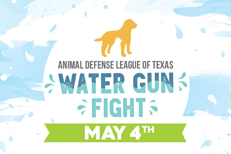 ADL Water Gun Fight 2017 - May 4th at 6:30 pm