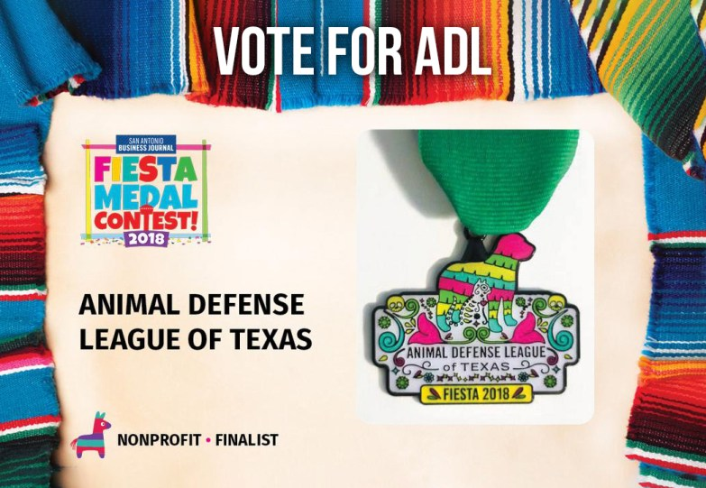 Vote For ADL's Medal