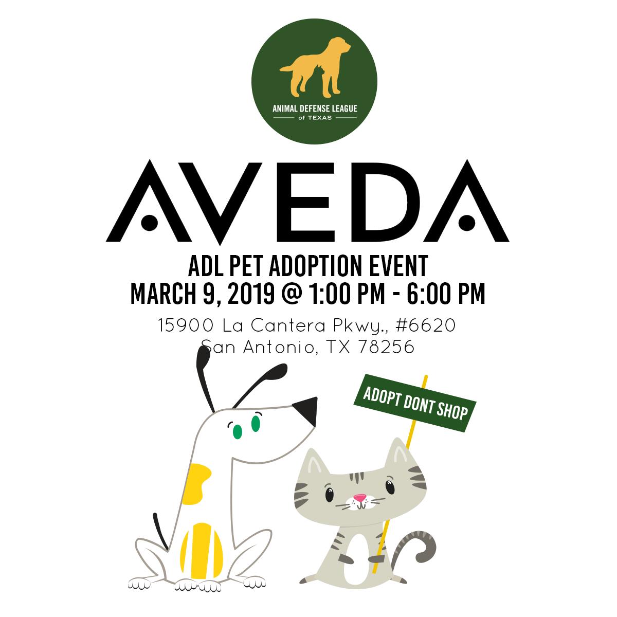 Aveda La Cantera Adl Adoption Event Animal Defense League Of Texas San Antonio Animal Defense League Of Texas San Antonio