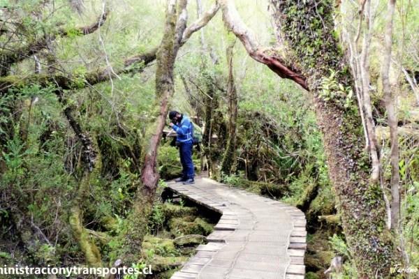Viaje a Chiloé #5: Visita al Parque Nacional Chiloé y mucho más