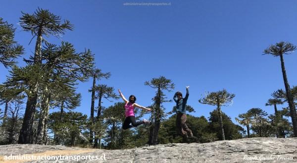 AV Araucanía – Visita al hermoso Parque Nacional Nahuelbuta