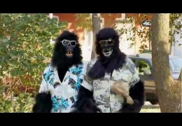 Just For Laughs: Gags – Season 9 – Episode 6