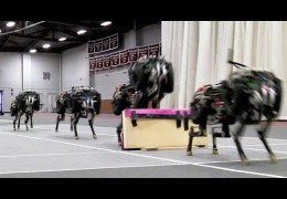 MIT cheetah robot lands the running jump