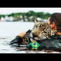 20 MOST INSPIRING ANIMAL RESCUES